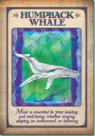 Messages From Your Animal Spirit Guide Steven Farmer Mystic Wish
