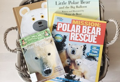 Polar Bear Story Time and Book List for Kids