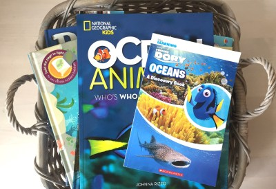 ocean picture books for preschoolers