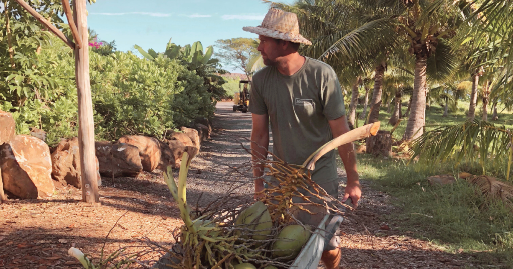 Straw Hat Coconut Farmer