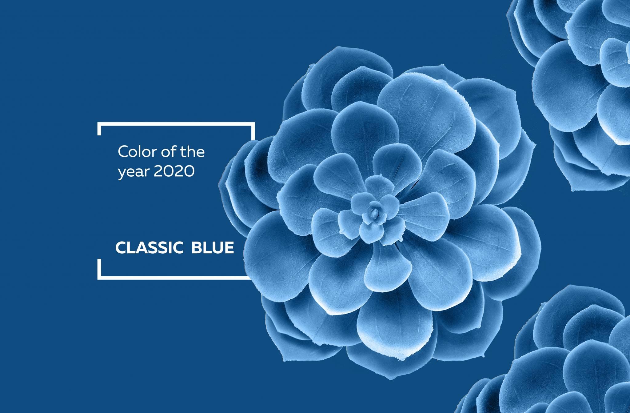 Couleur Pantone De L Année 2017 le «classic blue» pantone, couleur de l'année 2020, invite à