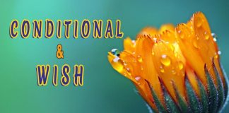 Conditional and wish