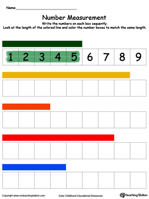 Kindergarten Measurement Printable Worksheets