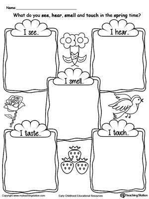 Worksheets Five Senses Worksheet For Kindergarten common worksheets five senses for kindergarten my coloring pages az pages