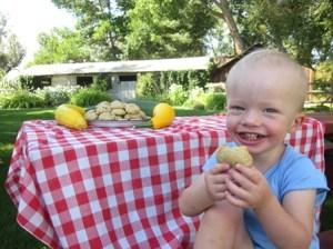 Zucchini cookies & Joel