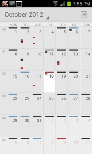 Official Google Calendar App