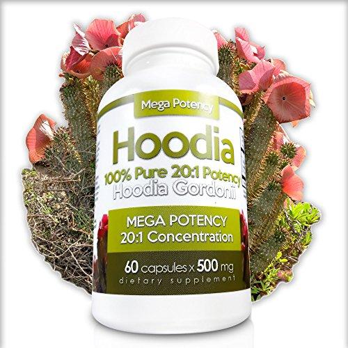Hoodia Gordonii Pills Price In Pakistan Hoodia Myteleshop