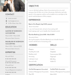Free Professional Banking Resume Template