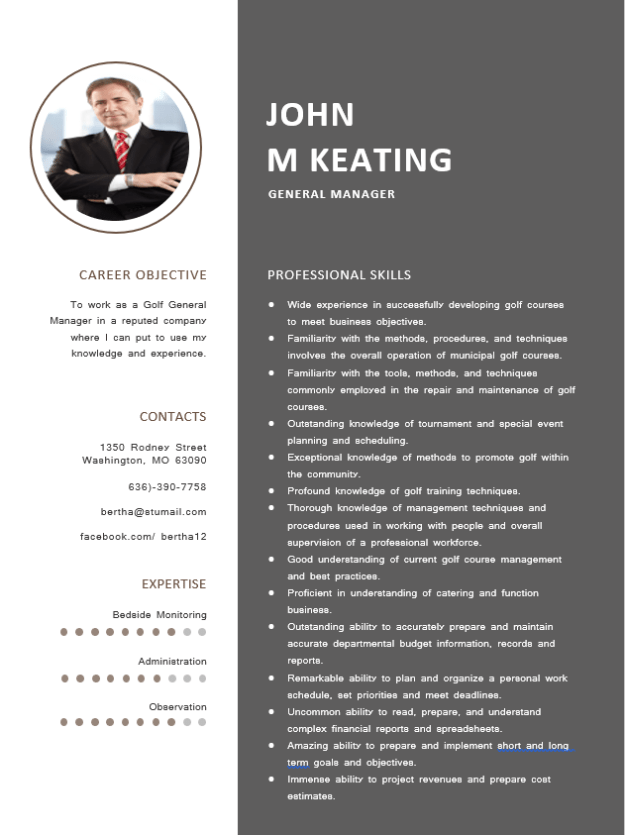 4+ General Manager Resume Template Example