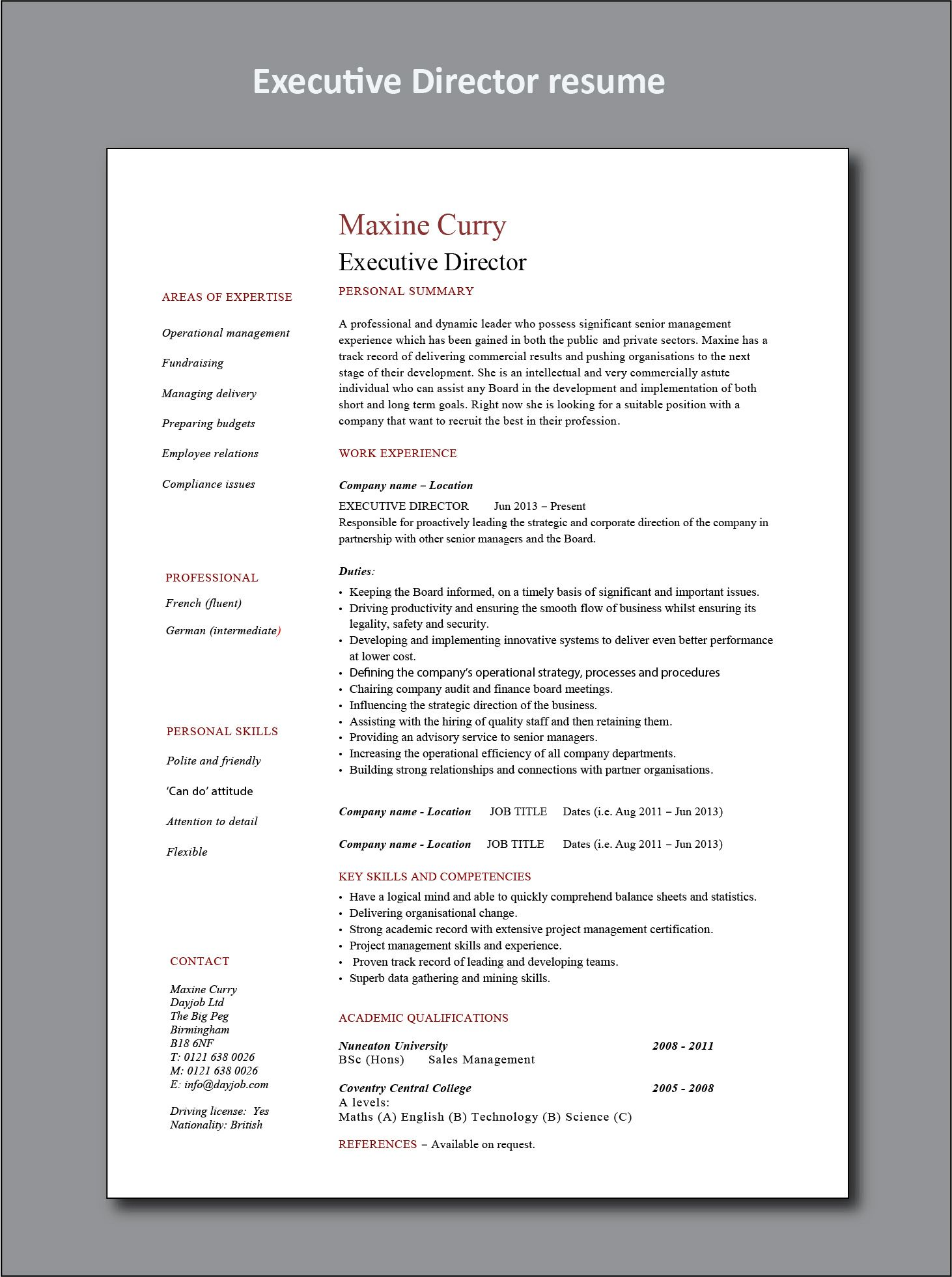 Executive Director resume example