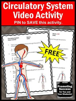 FREE Circulatory Human Body Systems 5th Grade Science Distance Learning Packet