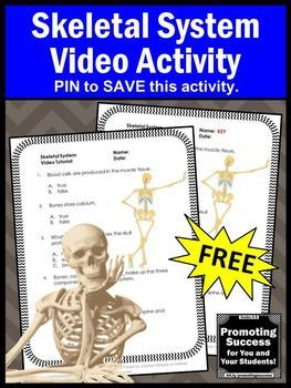 FREE Skeletal Human Body System 5th Grade Science Distance Learning Packet Video