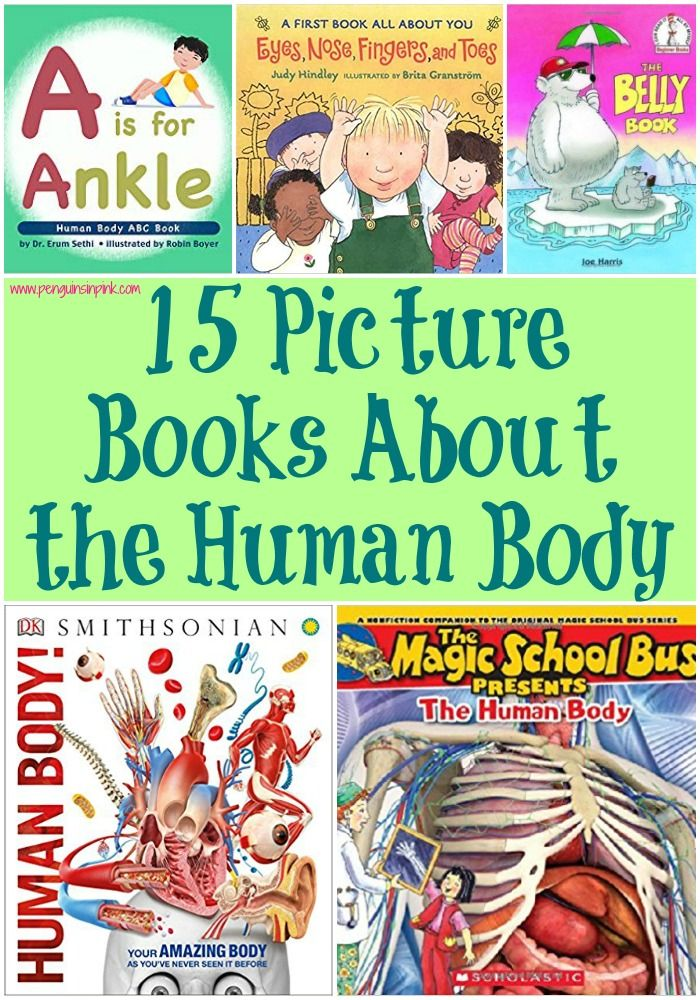 15 Picture Books About the Human Body Penguins in Pink