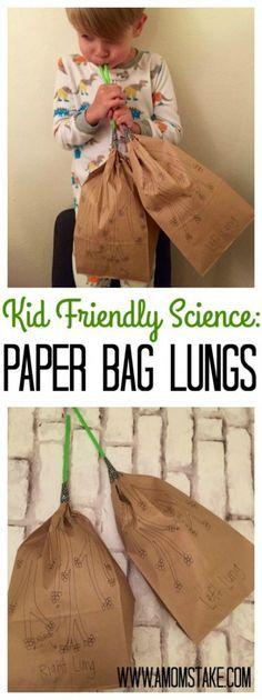Kid Friendly Science Paper Bag Lungs