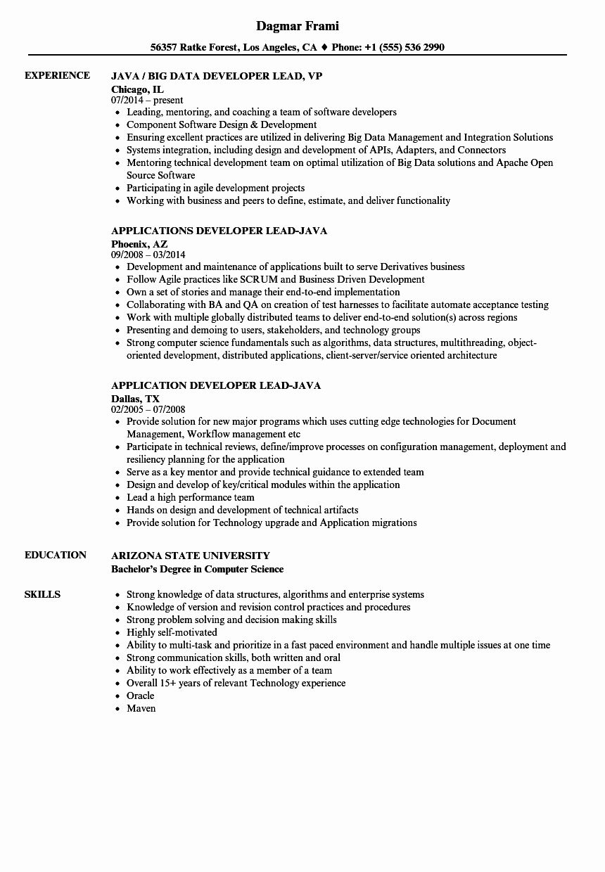 Java Developer Resume 5 Years Experience Fresh Developer Lead Java Resume Samples