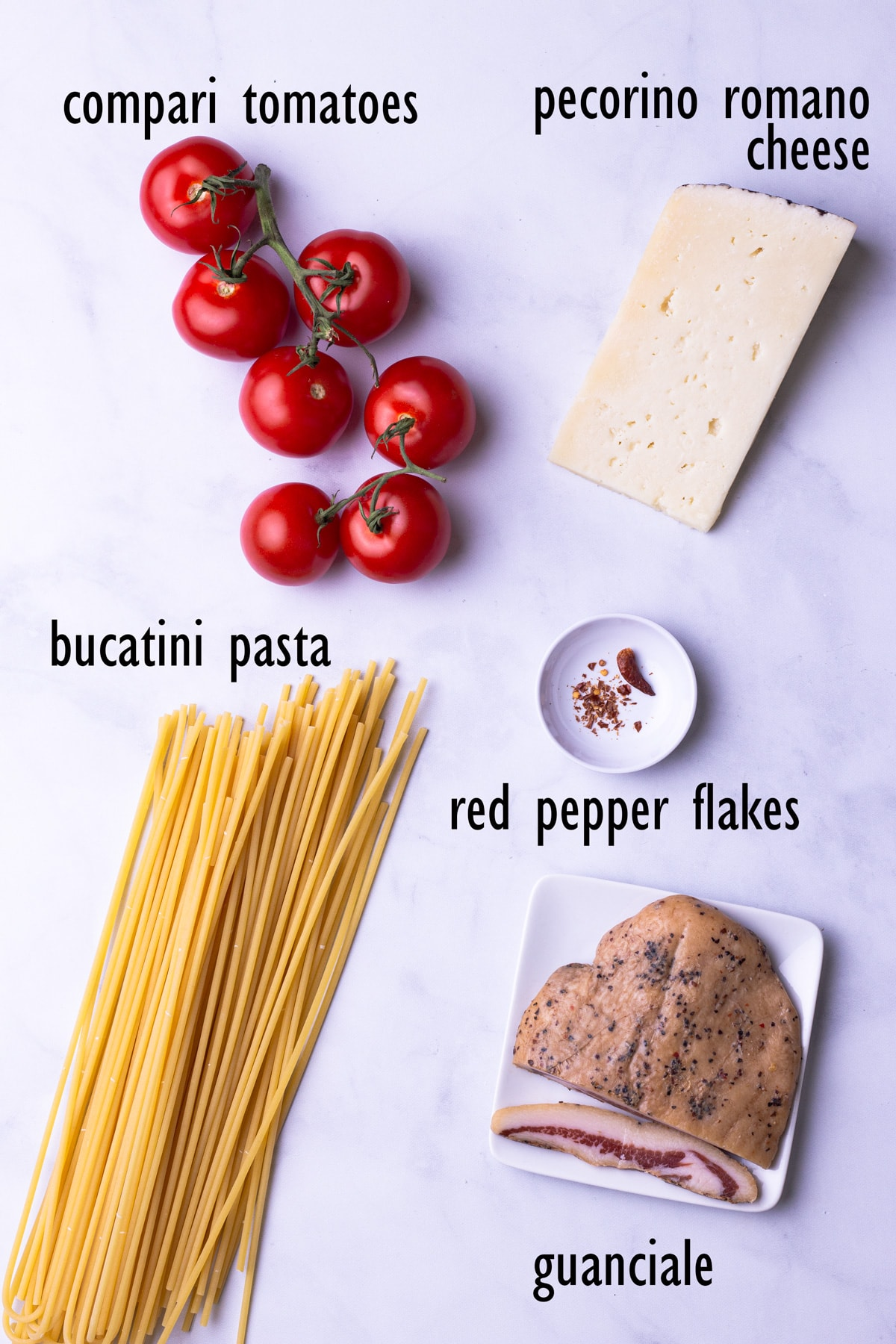 Overhead view of pasta ingredients including bucatini, tomatoes, pecorino cheese, red pepper and guanciale.