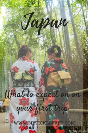 Japan Travel tips you must know before going