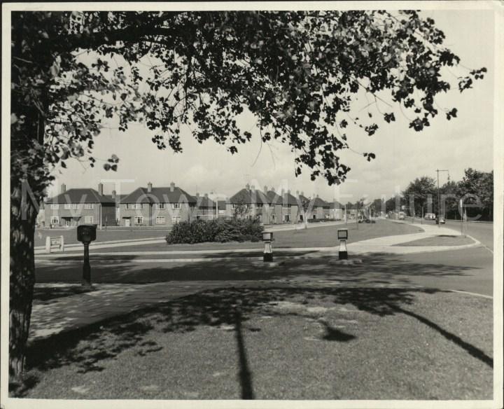 Beechwood,Marton Side Way