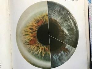 Iris Eye Reading