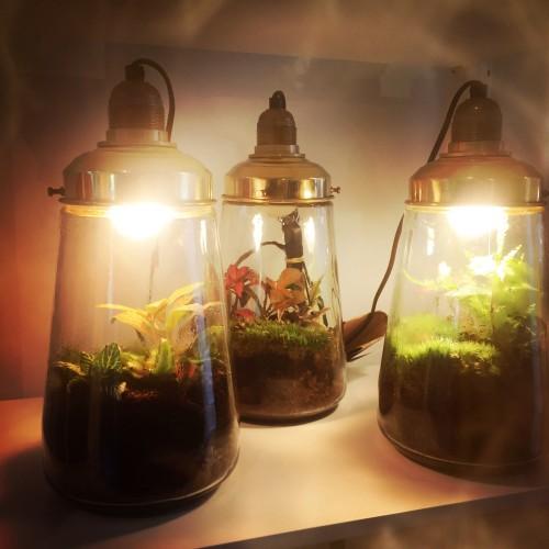 Spruitje Lamp Geitenwollenwinkel