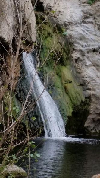 Paradise Falls im Wildwood Park