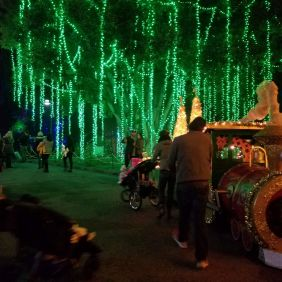 Los Angeles Zoo Lights