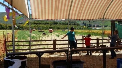 Landwirtschaft in Kalifornien