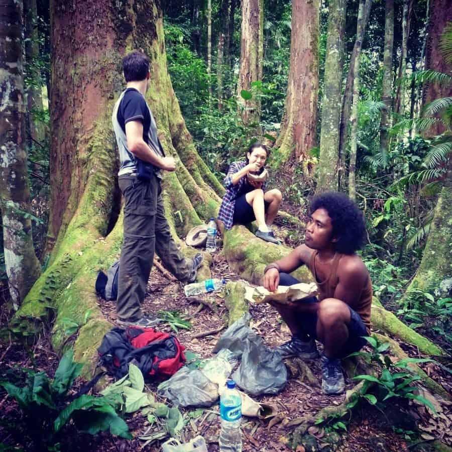 Jungle trek Bukit Lawang