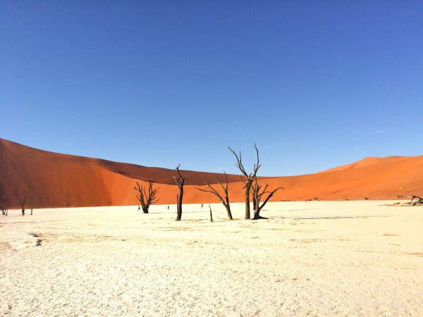 My Travel Tricks - tips and tricks so explore the world   Dead vlei Namibia