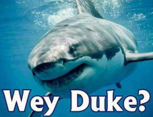 Whey Duke