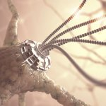 Neural Nanotechnology