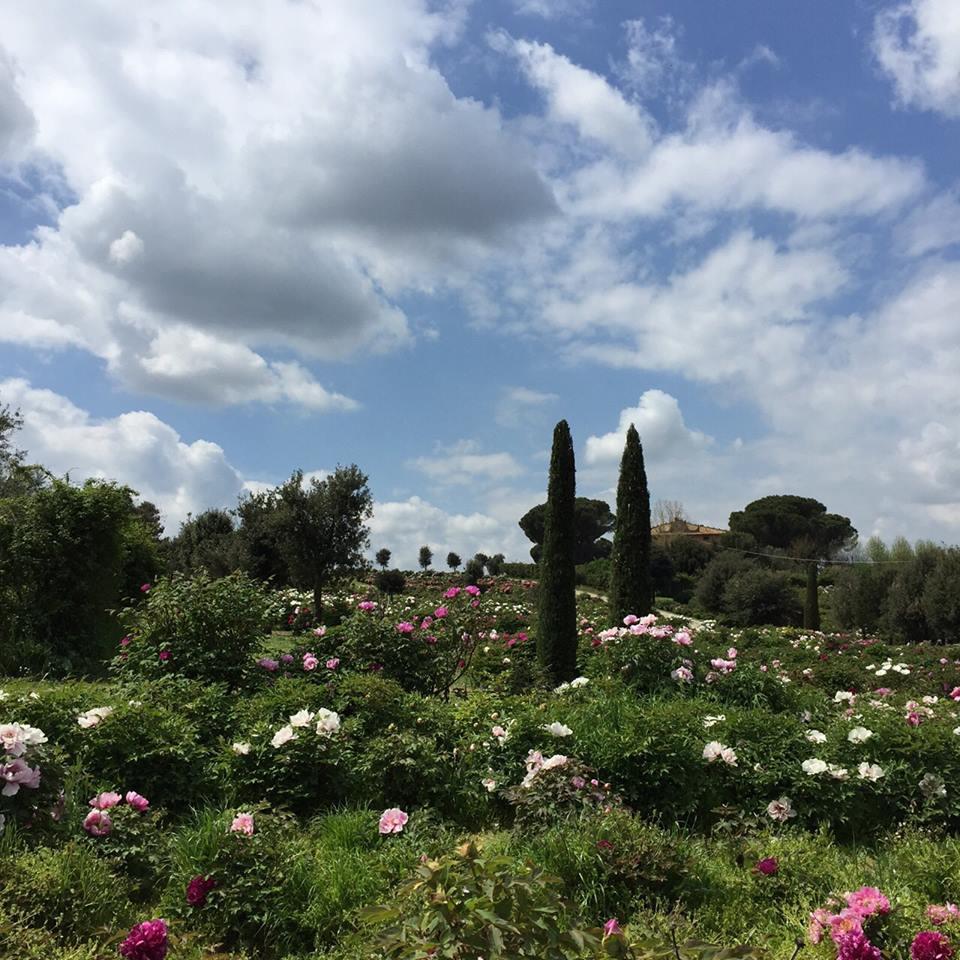 I giardini del Centro Botanico Moutan Tuscia