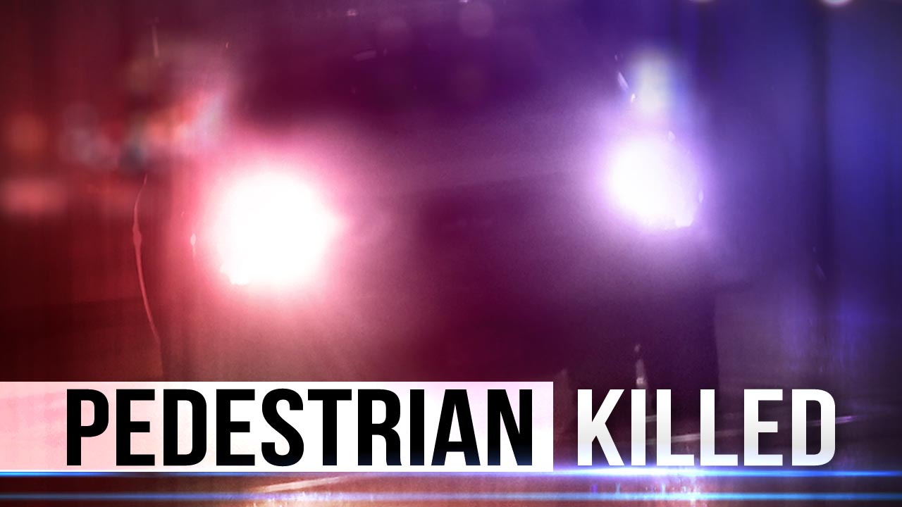 pedestrian-killed_1480772253780.jpg