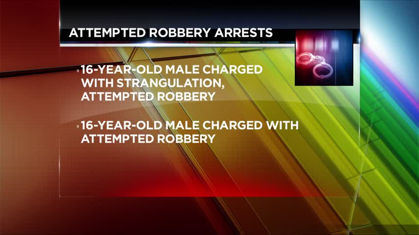 Two Elmira Teens Arrested for Attempted Robbery_76568521