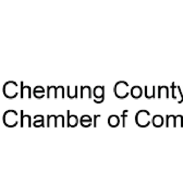 chemung county_1531930800336.png.jpg