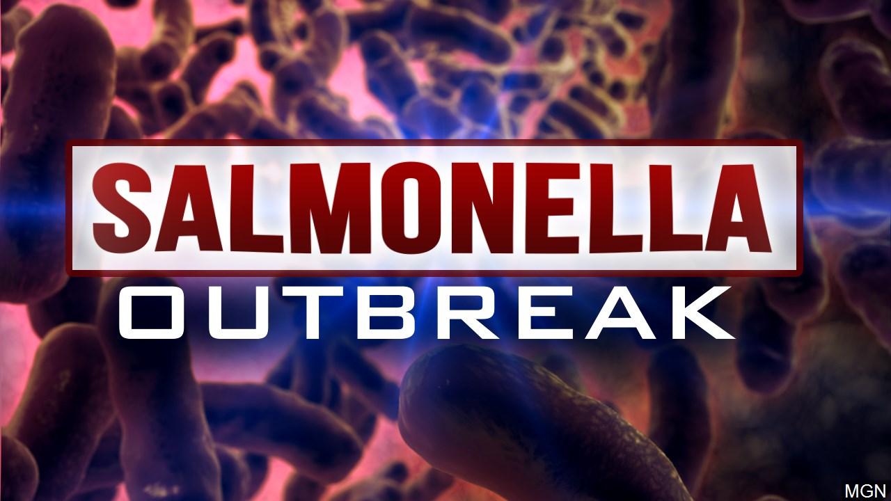 salmonella_1542307742653.jpg
