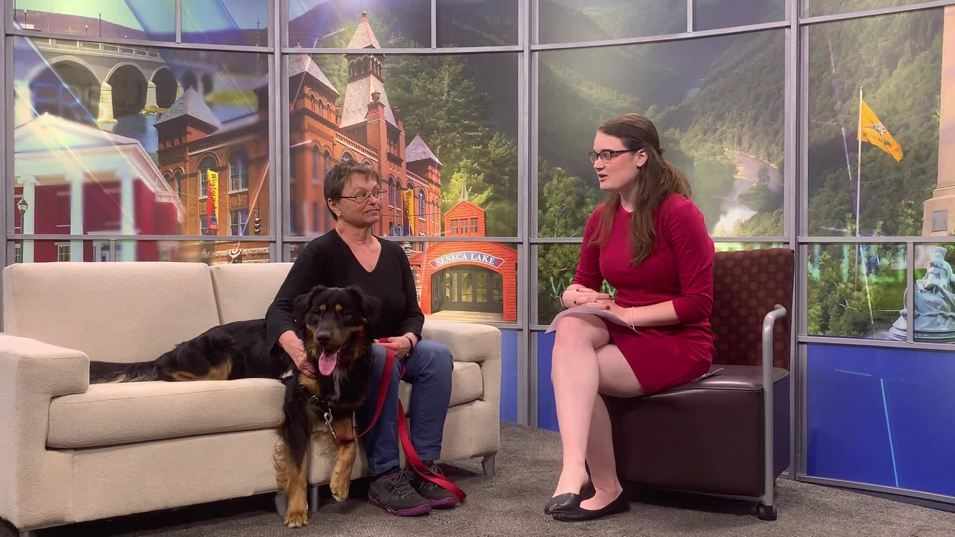 Pet of the Week 5/27: Titan