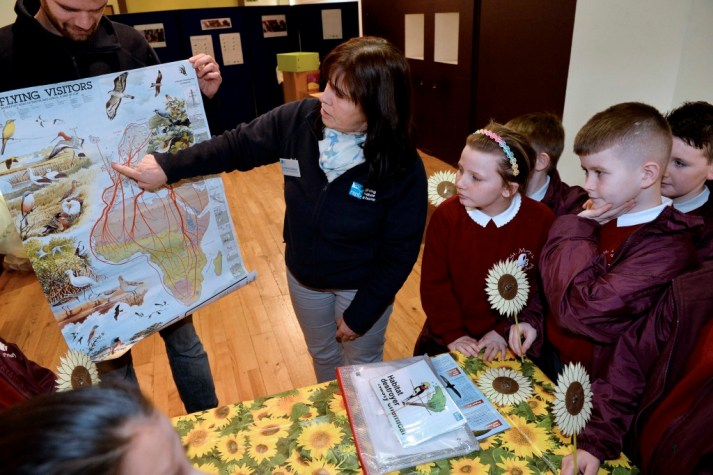 Pupils from St Mary's Primary School learn about migratory birds from the RSPB at CastleCourt event