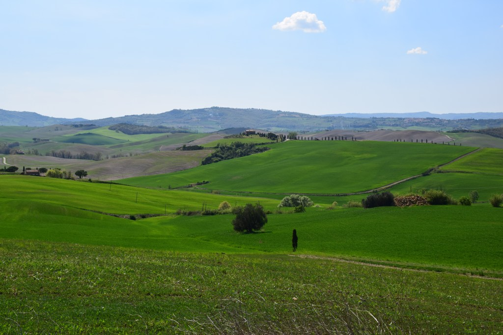 Tuscany, Val D' Orcia, Italy, hills, vineyards, peaceful, serene
