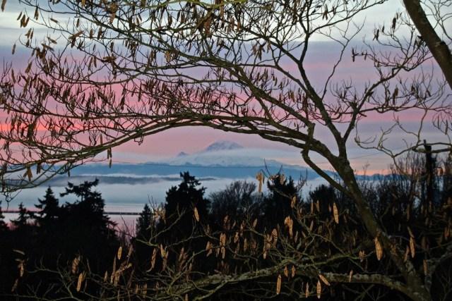 Lake and Mountain, Seattle