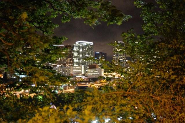 Skyline, Bellevue, Washington