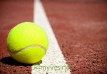 Vésinet Ibis Tennis Club