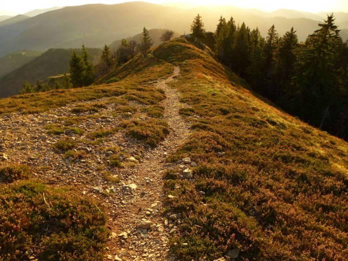 Belchen : sommet incontournable, culminant à 1414 m. Vue imprenable sur toute la région.