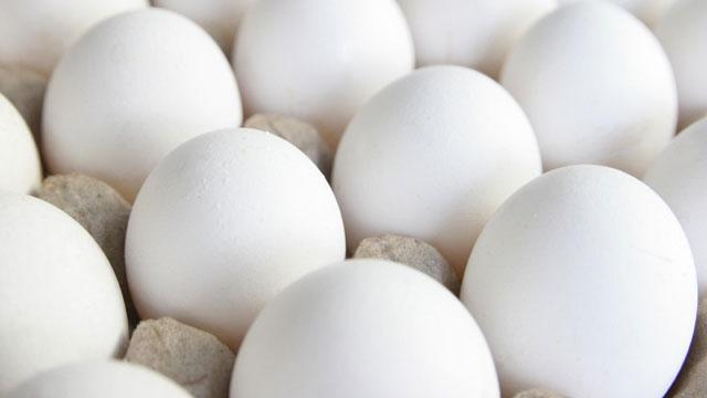 Eggs_2503742203907466-159532
