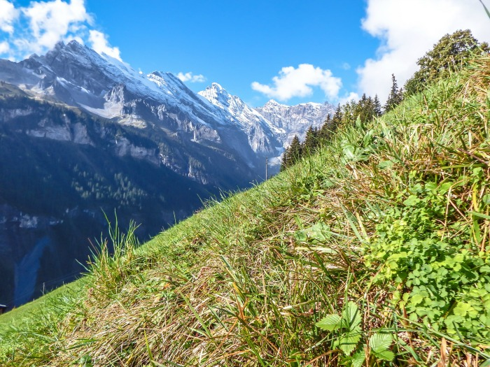 Gimmelwald, Switzerland | Hiking in the Swiss Alps | Murren | mountains | mountainside