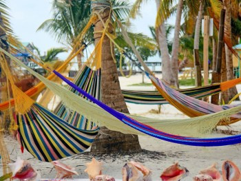 3 Days in Caye Caulker, Belize   How to get there   Where to stay   What to do   Where to eat   and what NOT to freak out about.