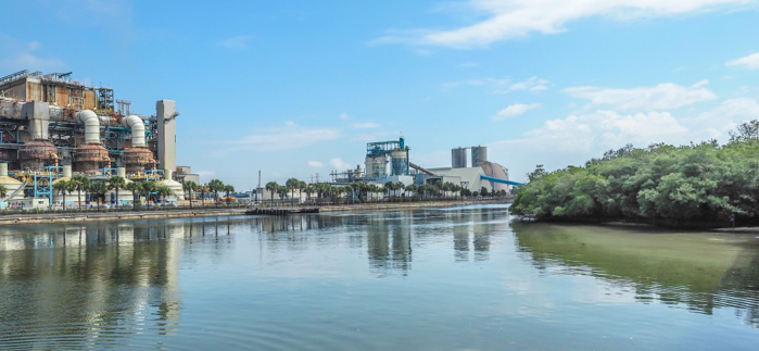 Tampa's Manatee Viewing Center | Apollo Beach, Tampa, Florida | Tampa Electric Company | TECO | Florida Manatees | Florida wildlife | Free things to do in Tampa | What to do in Tampa | Fun things to do in Tampa | viewing platform and power plants