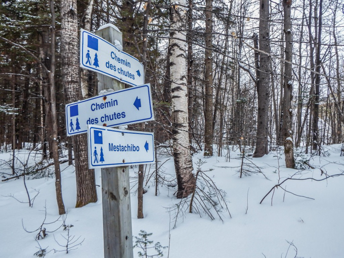 Ice Canyoning in Québec // Why You Should Be All up in This | Signs seen while ice canyoning in Québec