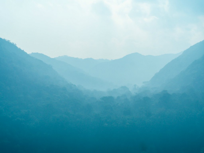 Black Rock Lodge | Belize | Misty jungle at Black Rock Lodge in San Ignacio, Belize