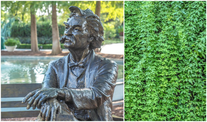 Dallas Arboretum and Botanical Garden in Dallas, Texas // Dallas CityPASS